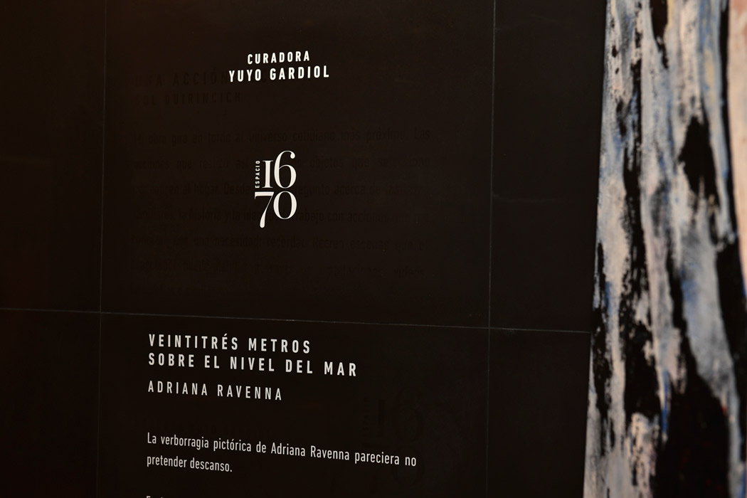 "2º Muestra Espacio 1670 | ""23 MSNM"" Adriana Ravenna"