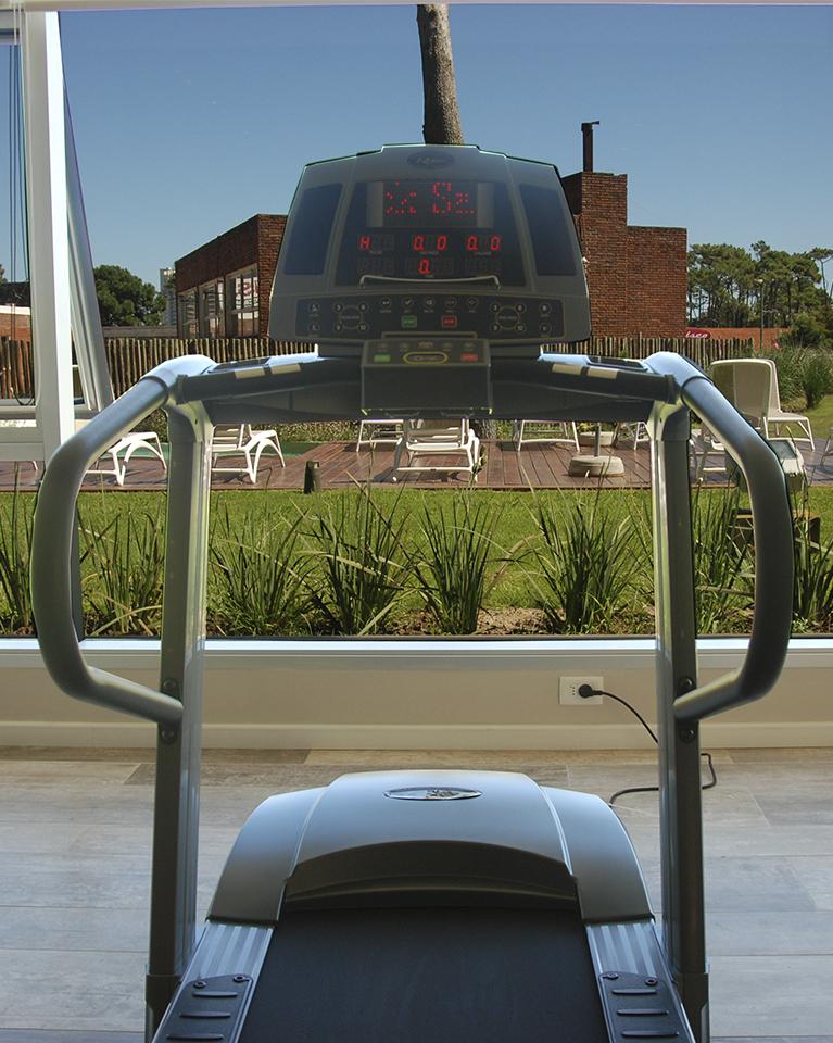 Gala Vista - Moviles